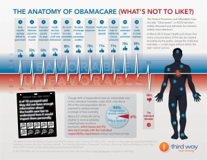 the-anatomy-of-obamacare-whats-not-to-like_5029170d24a89